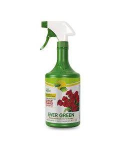 Fertilizante para Rosas   Evergreen 1 litro