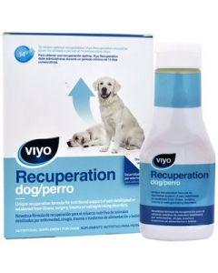 Suplemento de recuperación para Perro   Viyo 150 mL