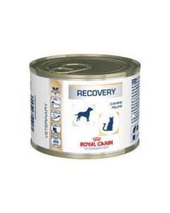 Alimento Medicado para perro y gato  Recovery Royal Canin 400 gramos