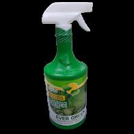 Fertilizante Evergreen para Plantas Verdes 1 Lt